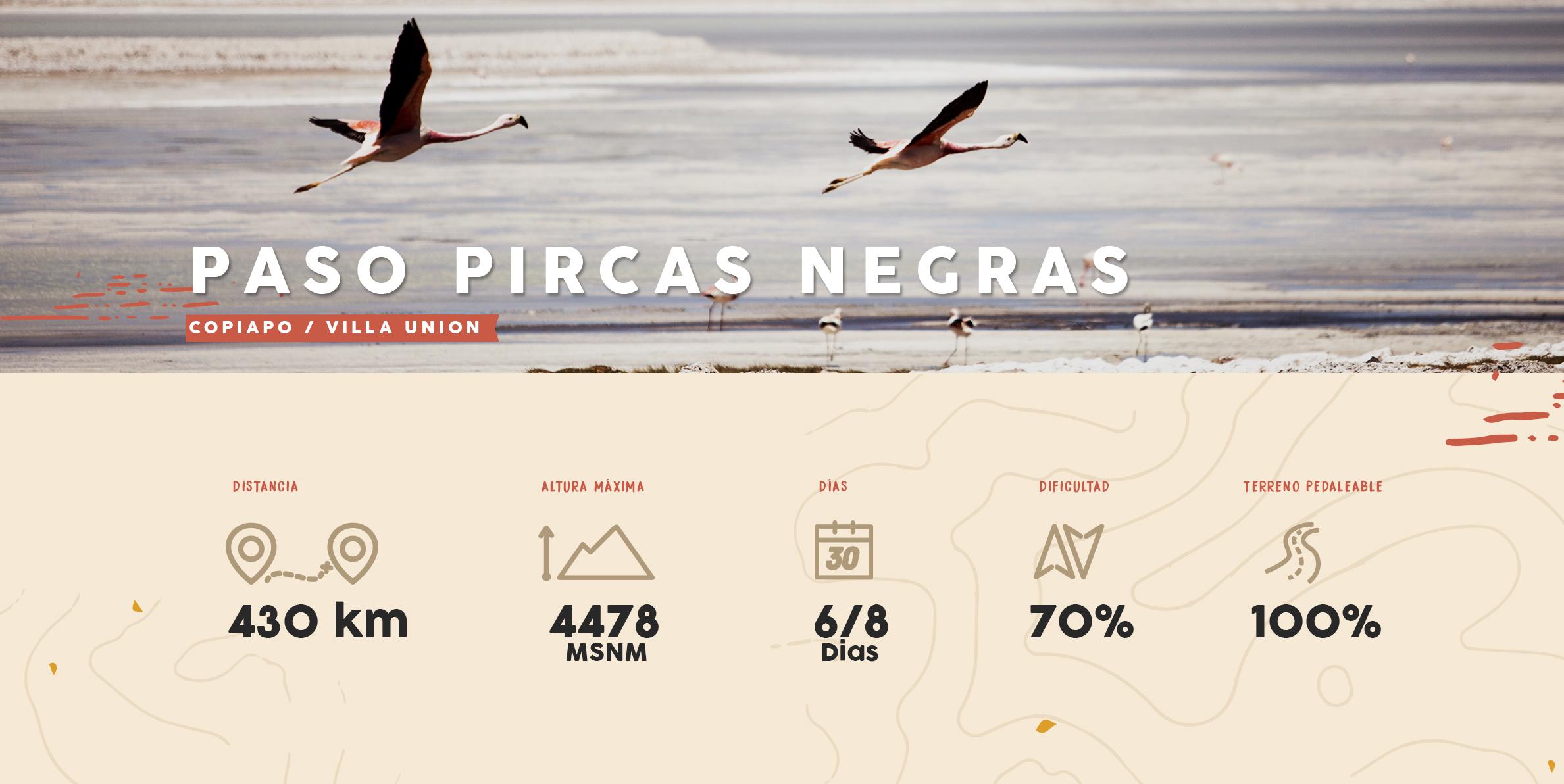 Paso Pircas Negras